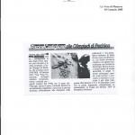 articolo 24